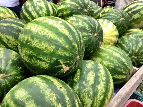 Just iPhone | watermelon #brasil #melancia #verde #green #frutas #fruit