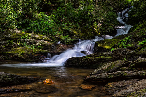 longexposure light fall water forest waterfall rocks wildflowers 2014 roaringforkfalls 72614