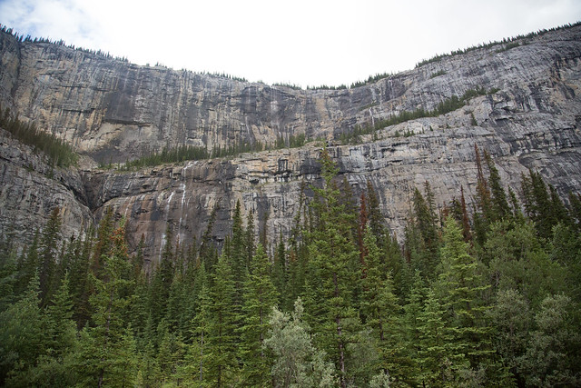 Weeping Wall Banff National Park World Heritage
