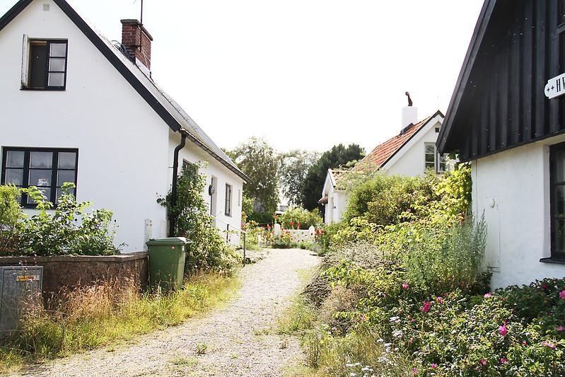 Utflyktsdag 2: Österlenkryddor, Kåseberga, Skillinge och Vacker Vardag