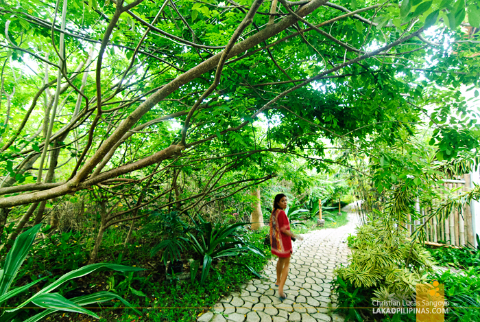 Lush Pathways at Amun Ini Beach Resort in Anda, Bohol