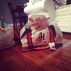 Oliver was looking to go to rochester for some racing this weekend also. Sadly he couldn't get a ride