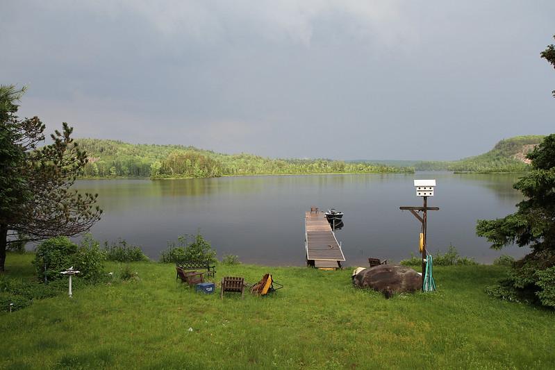 post rain loveliness