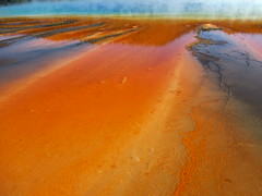 Close up of Grand Prismatic Spring Runoff