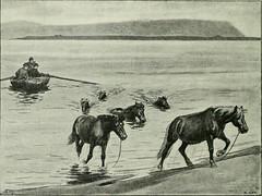 "Image from page 173 of ""Island am Beginn des 20 Jahrhunderts;"" (1904)"
