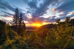 Bald Peak Road Viewpoint