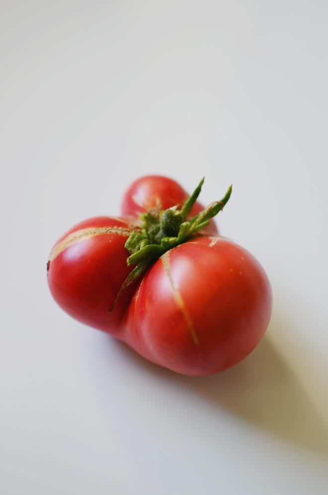 tomatoes '14