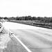 Hwy 105 Bridge over Coles Creek, Washington, Texas 1408231432bw