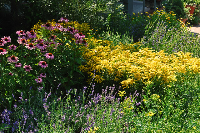 Herb Garden Border (2)