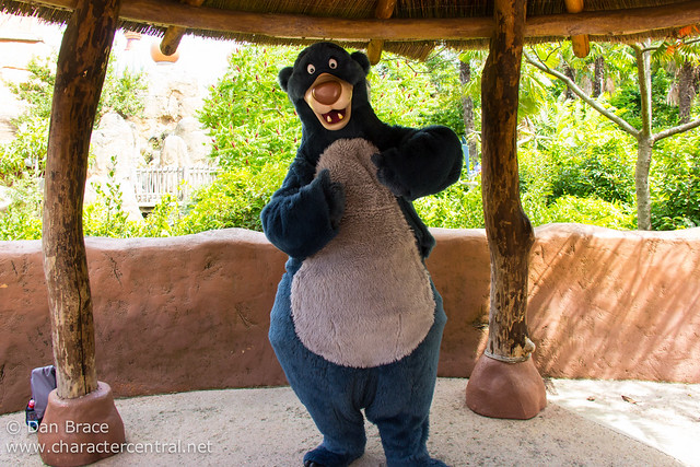 Meeting Baloo