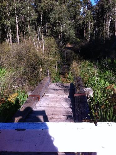 Hoffman's Mill: Rail Bridge