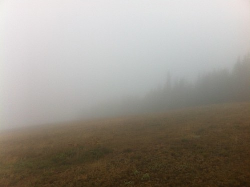 Fog at the Visitors Center