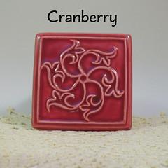 Envision_Cranberry