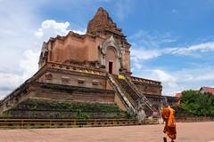 The Monk & Wat Chedi Luang