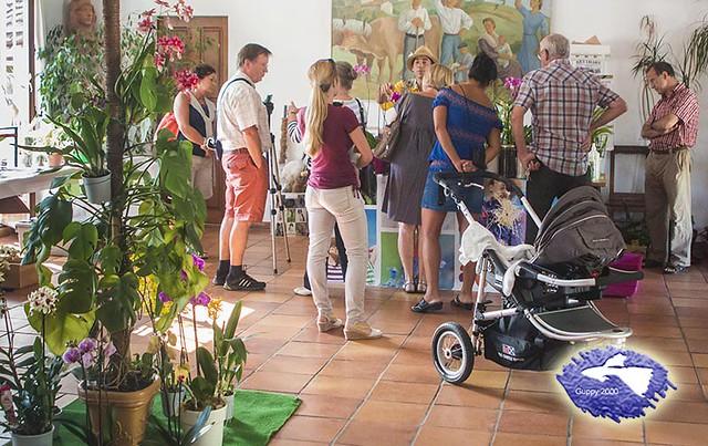 Sala de exposiciones del II Encuentro de aficionados a las orquídeas del País Vasco