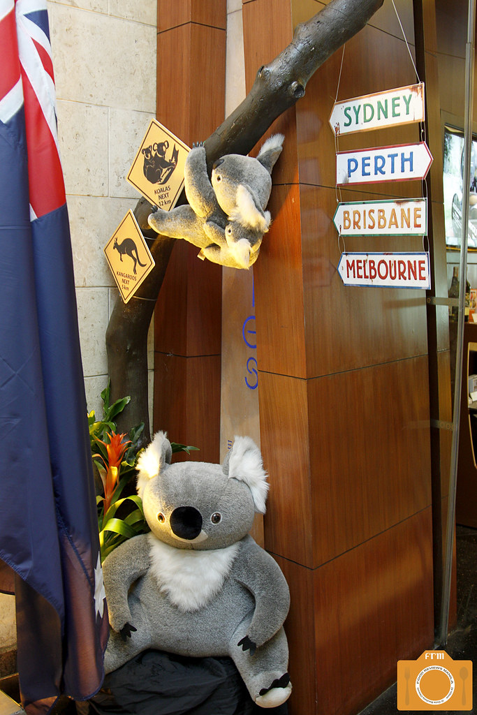 Australian Sojourn Koala