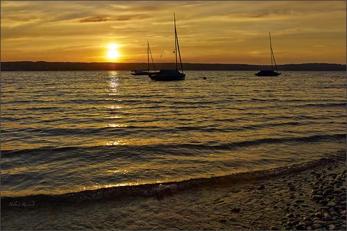 leica sunset juni germany bayern deutschland bavaria abend sonnenuntergang boote starnbergersee m9 leicasummilux35mmf14asphii colorefexpro4 captureone7