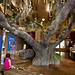 NatureDiscoverCntr_Tree