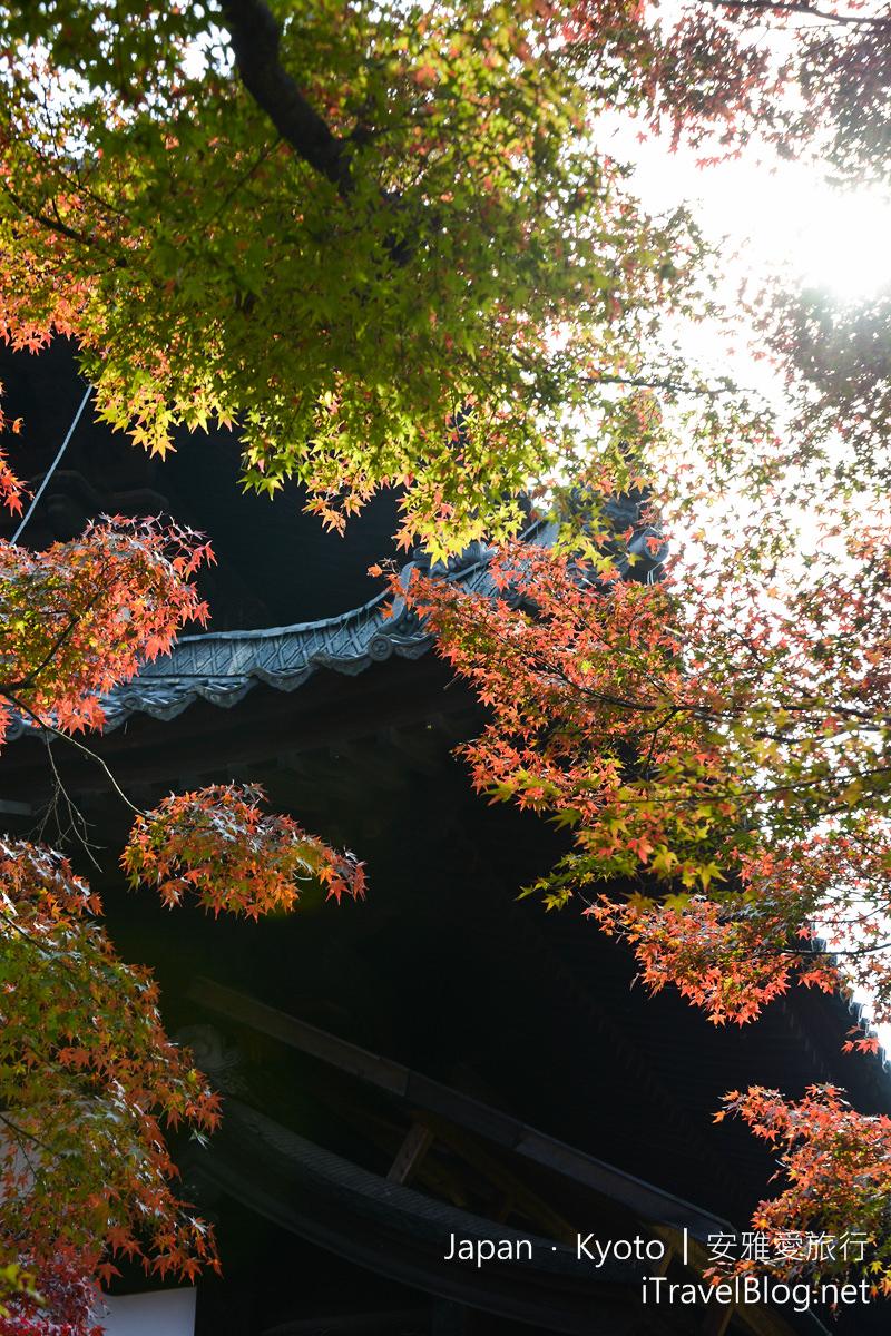 京都 东福寺50