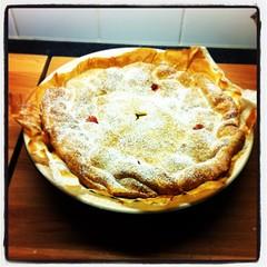 pie, rhubarb pie, pot pie, baked goods, produce, food, dish, cherry pie, cuisine, apple pie,