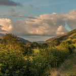 Summer evening on the Talyllyn Railway