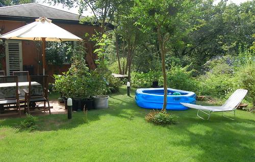 ★夏の庭★藤野から・・・