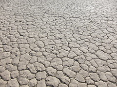 floor(0.0), asphalt(0.0), stone wall(0.0), cobblestone(0.0), road surface(0.0), flooring(0.0), soil(1.0), drought(1.0), disaster(1.0),