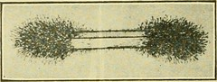 """Image from page 472 of """"Farm machinery and farm motors"""" (1908)"""
