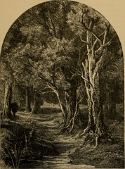 "Image from page 34 of ""Bryant. Poems from the works of William Cullen Bryant"" (1884)"