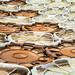 Platten by thomasvorwerg