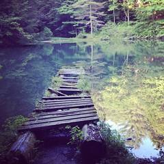 Monk's pond --> Kripalu - august 2014