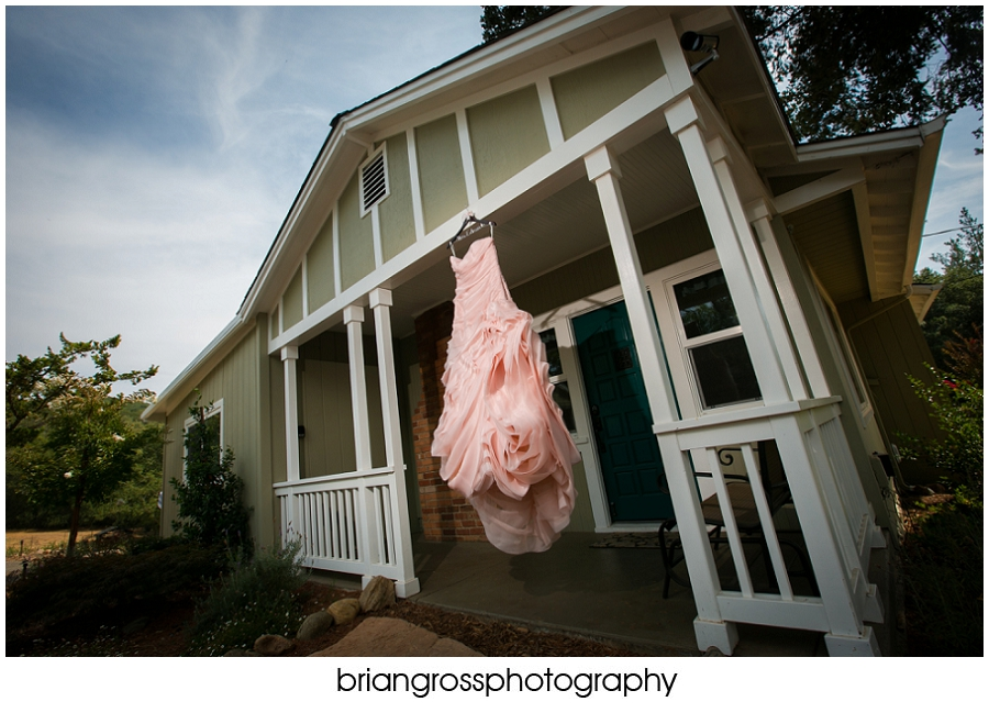 Brandi_Will_Preview_BrianGrossPhotography-111