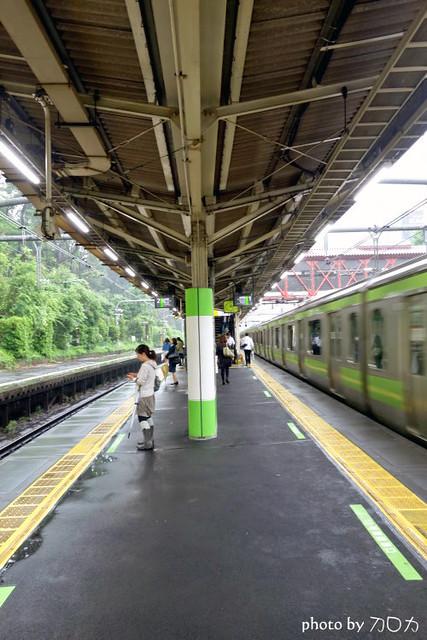 05日本東京原宿車站suica卡