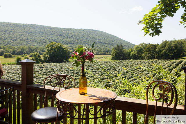 Seating at the deck and view of rolling green grape vines