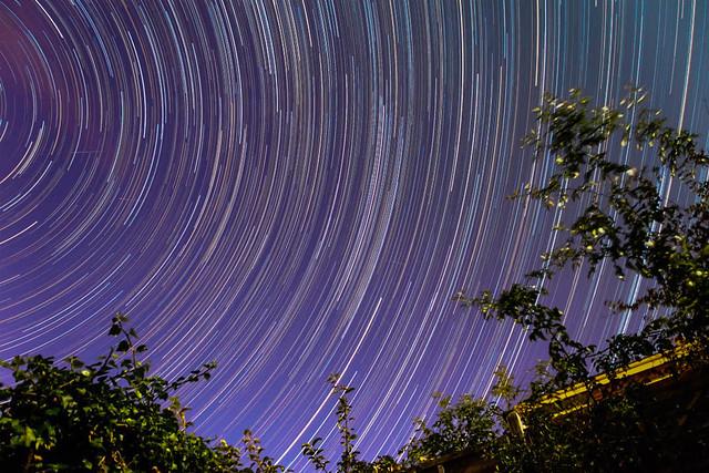 Startrails of Perseid Meteor Shower Watch