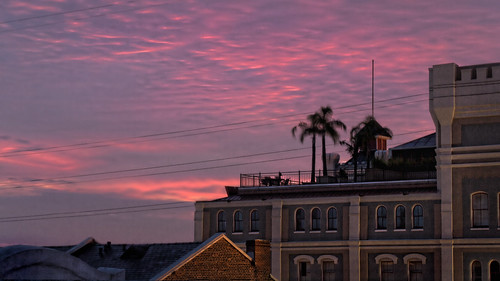 morning sunrise dawn rooftops deck palmtrees retreat frenchquarter crescentcity bigeasy nawlins vieuxcarre lifestylesoftherichandfamous