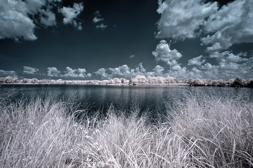 Infrared Chesapeake Bay (Explore)
