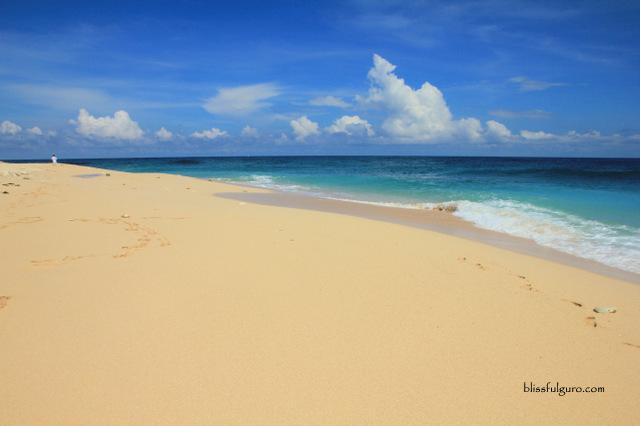 Dasol Pangasinan Colibra Snake Island