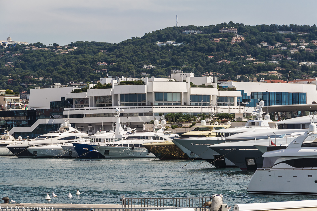 Cannes-49