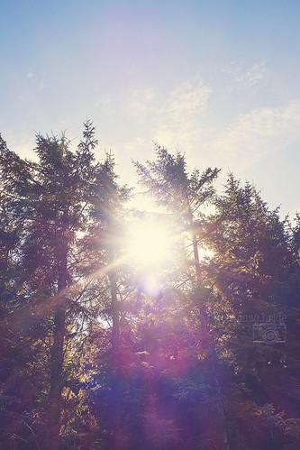 Sunny September...