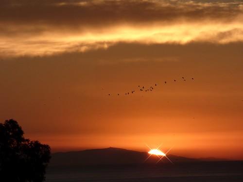 vacation holiday sunrise dawn seaside spain costadelsol benalmadena magicunicornverybest