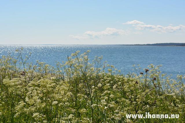 Gotland view
