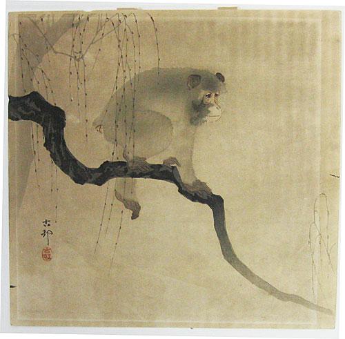 014-Mono en una rama-via scriptum