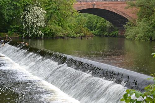 052 - Glasgow - Kelvingrove park