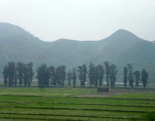 Zhejiang-Wenzhou-Ningbo-train (18)