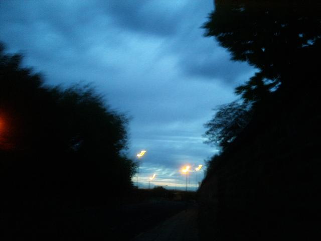 PIC_1507