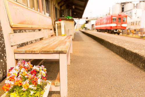 railroad flower station japan train canon bench railway nostalgia 花 電車 駅 千葉 鉄道 銚子電鉄