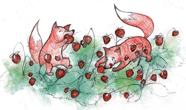 Лисы и земляника
