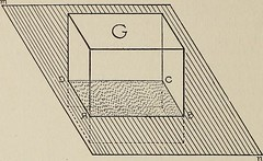 """Image from page 405 of """"Popular science monthly"""" (1913)"""