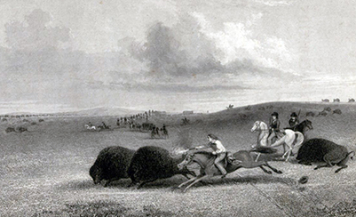 <i>A Scamper Among the Buffalo</i>, by J. G. Chapman